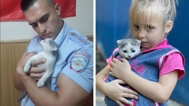 «Обыскали всю округу»: спасенному участковым котенку нашли хозяев