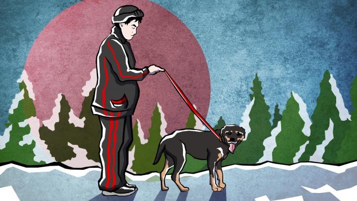 «Пинал и бил ногами»: ротвейлер и его хозяин держат в страхе «Белые Росы»