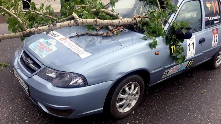 Делаем всё возможное: пострадавшая в ДТП с деревом волгоградка по-прежнему в реанимации