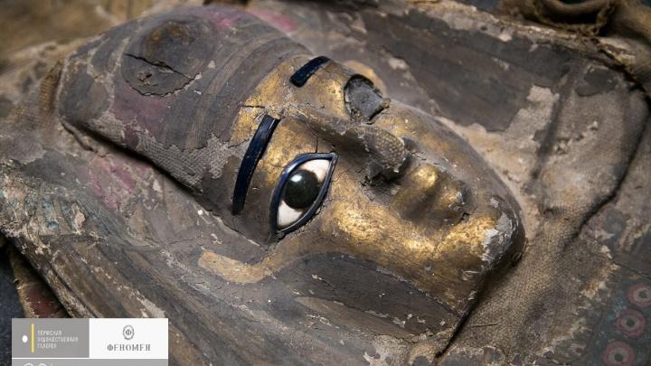 В Москве изучают мумии из Пермской галереи: определят пол и причину смерти. Фото вскрытия саркофагов