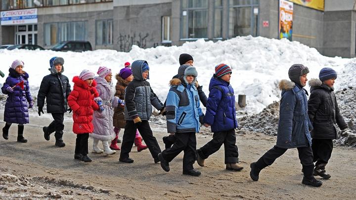 Так много еще никогда не было: в Тюменской области заметили тренд на многодетность