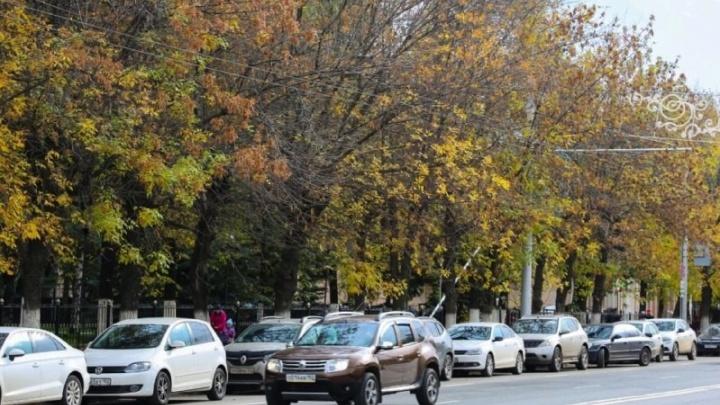 «Скоро за воздух начнут деньги собирать»: уфимцы — о платных парковках