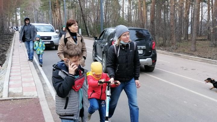 «Прогулка по лесу связана со стрессом»: в Шарташском лесопарке автомобилисты ездят по велодорожке
