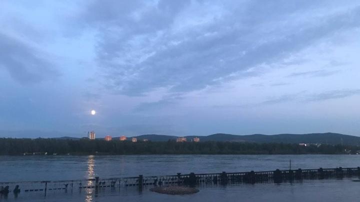 Вода упала, но не спешит уходить: что с уровнем Енисея в Красноярске