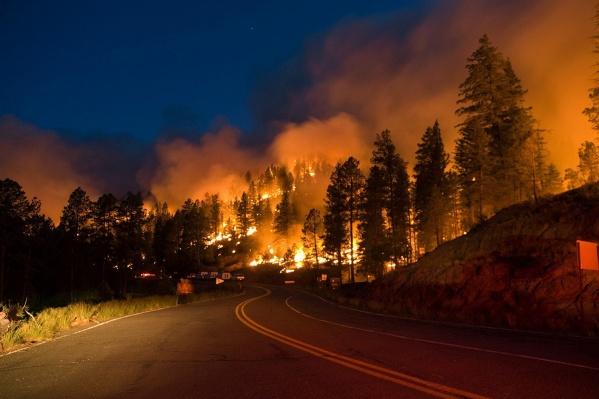 Страшная ситуация с лесными пожарами сложилась на юге области