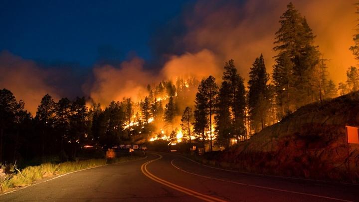 В Челябинской области поселок эвакуировали из-за лесного пожара
