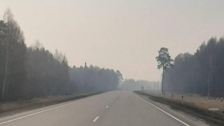 На тюменских трассах — сильное задымление из-за пожаров. Предупреждение ГИБДД