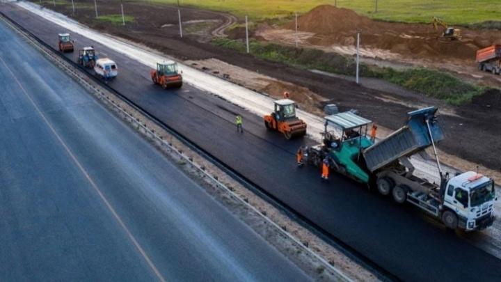 В Самарской области из-за строительства трассы пересадили краснокнижные растения