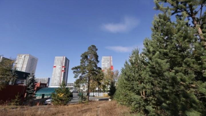 Опубликовано решение властей об отказе от многоуровневой парковки возле парка Гагарина в Челябинске