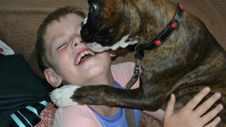 «Игорь до сих пор помогает животным»: подросток, умерший от онкологии, завещал свои деньги приютам