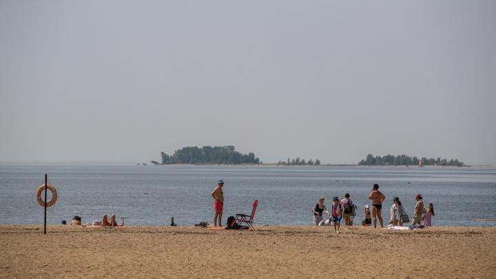 На границе с Бердском прорвало канализацию — новосибирцев просят пока не купаться в Обском море