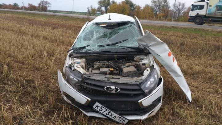 Машина убита в хлам: под Волгоградом водитель такси насмерть сбил двух кабанов