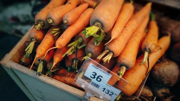 «Урожай закопали в поле»: почему морковь в Омской области стоит как евро и когда упадут цены