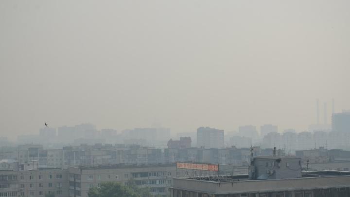 Тюмень окутал смог из-за природных пожаров. Как теперь жителям спастись от гари