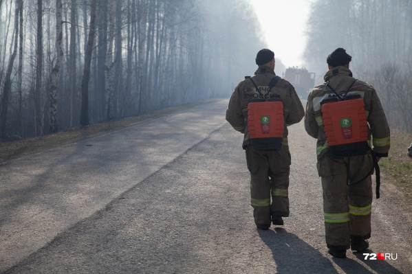 В Тюменской области уже объявили ЧС из-за природных пожаров, но прогнозы пока неутешительные. Тушить огонь мешают жара и сильный ветер