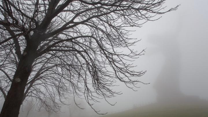 Ветер до 18 метров в секунду: рассказываем о погоде в Волгограде в канун Рождества