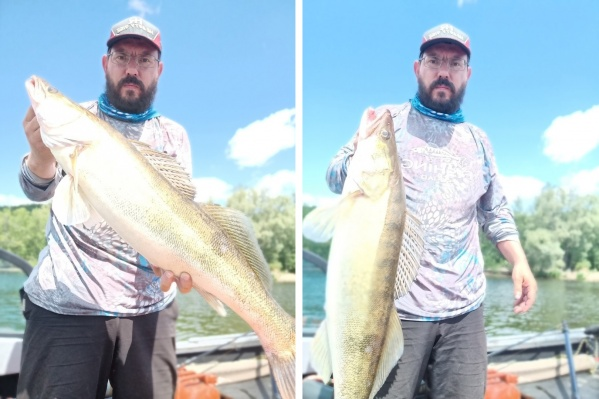 После короткой фотосессии Вячеслав отпустил рыбу обратно в воду