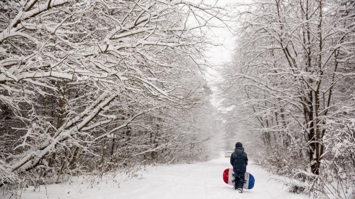 На Ярославскую область обрушатся аномальные морозы: экстренное предупреждение