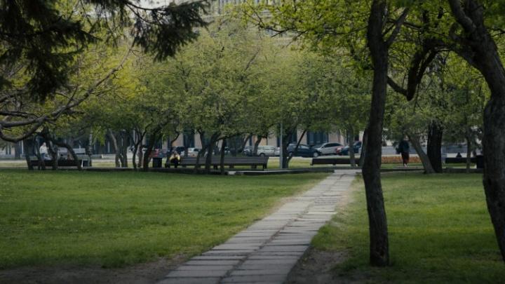 В Новосибирск вернется жара до +30 градусов: что еще обещают синоптики на выходные