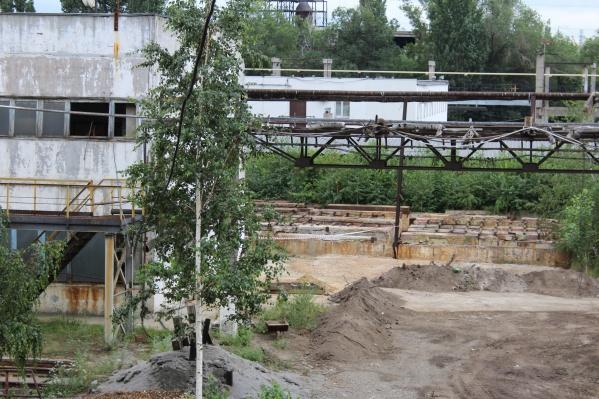 Сейчас территория заброшенного завода совсем не похожа на производственную площадку