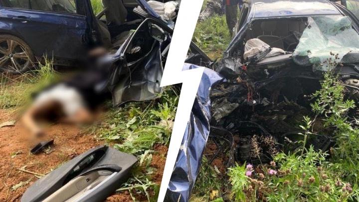 Смертельное ДТП под Сысертью: водитель BMW влетел в дерево. Фото