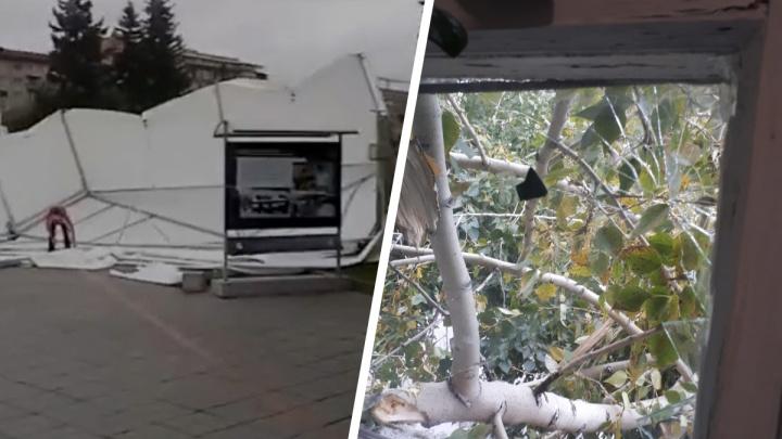 Сильный ветер обрушился на Новосибирск: посмотрите, как в городе ломает деревья и сдувает шатры