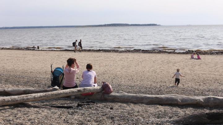 Почти лето. Жители Новосибирска отправились греться на пляжи — 12 теплых фото