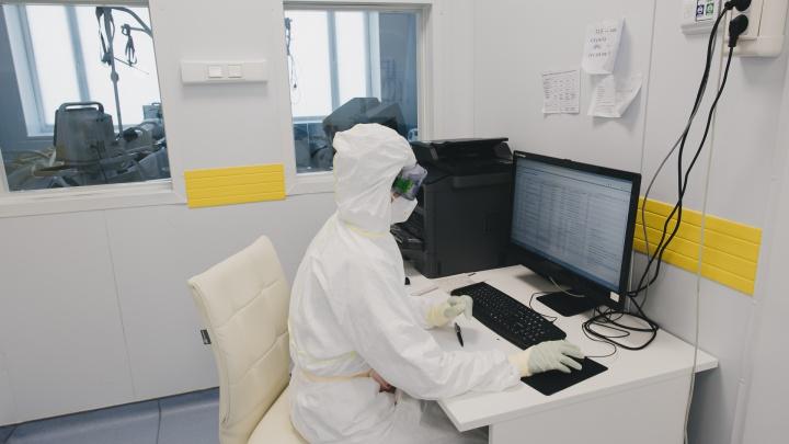 В России выявили максимум заболевших коронавирусом с начала года