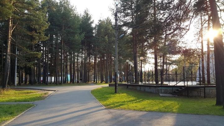 Сургут может не получить 90 миллионов рублей на благоустройство 4 городских парков