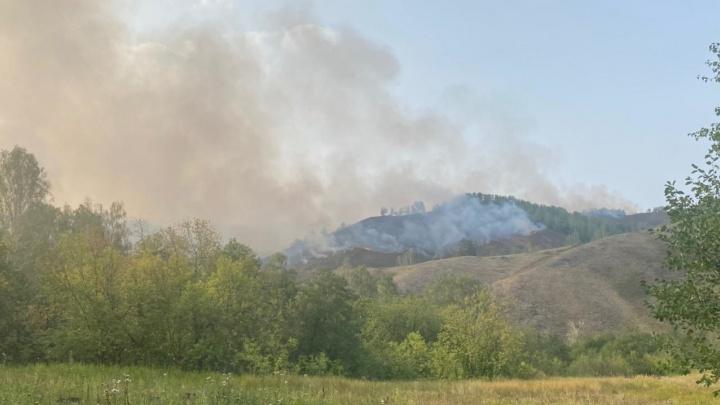 В Башкирии потушили один из самых крупных лесных пожаров