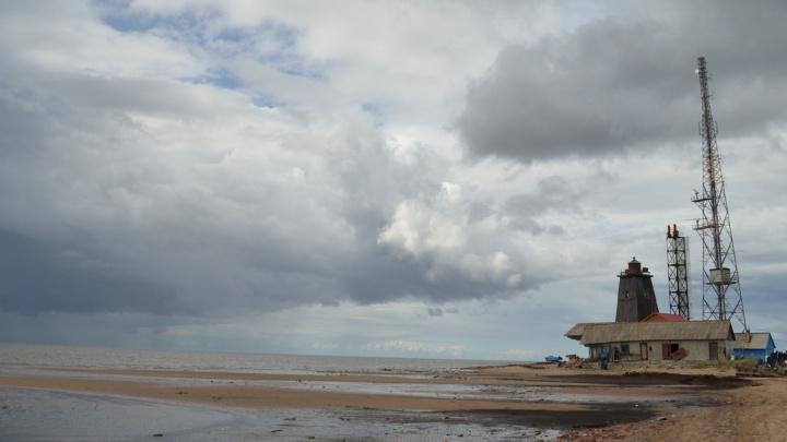 «Сегодня это остров забвения»: почему нужно развивать туризм на Мудьюге — мнение архангелогородца