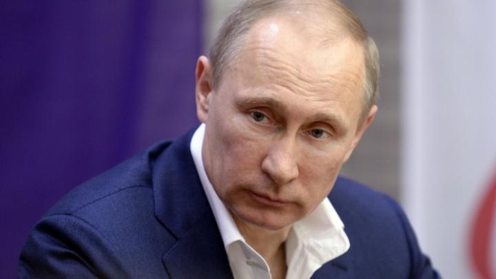 Четверо жителей Новосибирской области получили госнаграды от Путина — разбираемся, кто они