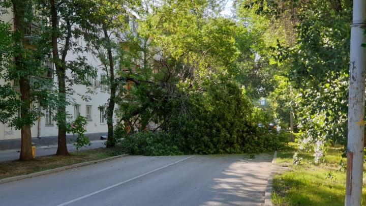 В Свердловской области из-за штормового ветра без света остались 7,6 тысячи человек