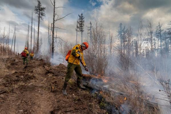 На территории региона зарегистрировано шесть лесных пожаров