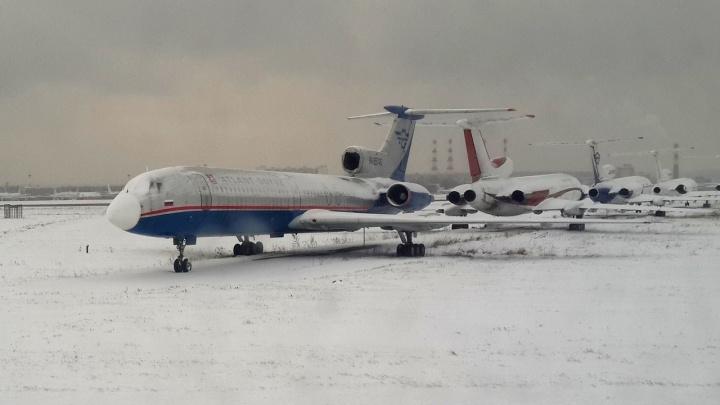 Иномарки и частный самолет: пять волгоградцев задержаны в Санкт-Петербурге за мошенничество с маткапиталом