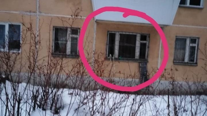 «Спускали на веревке воду в ведерке»: в Берёзовском соседи спасли собаку, запертую в квартире