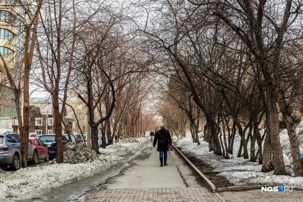 Теплые дни ожидают в первых числах марта