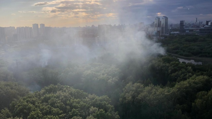 В парке Маяковского дорожки польют водой, чтобы пух больше не горел