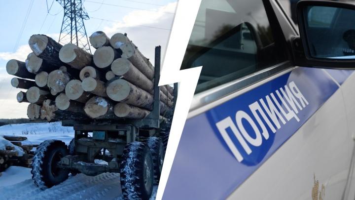 Наломал дров на тюремный срок: уральский «черный лесоруб» спилил деревьев на миллион рублей