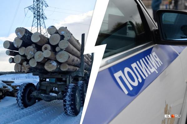 """Преступник спилил 29 деревьев, которые оценили на <nobr class=""""_"""">1,1 млн</nobr> рублей"""