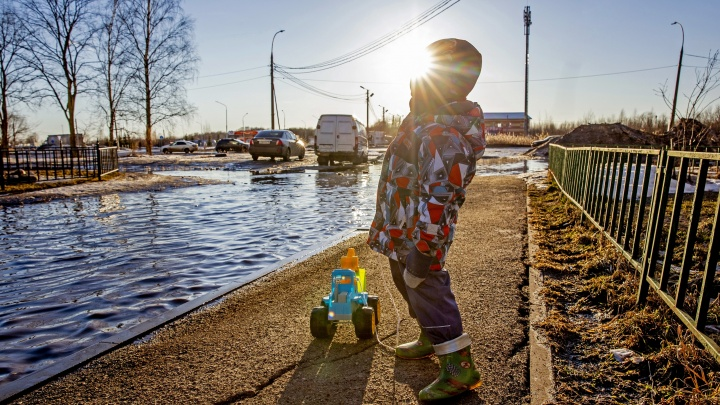 Поплыли: во что весной превратились улицы Ярославля