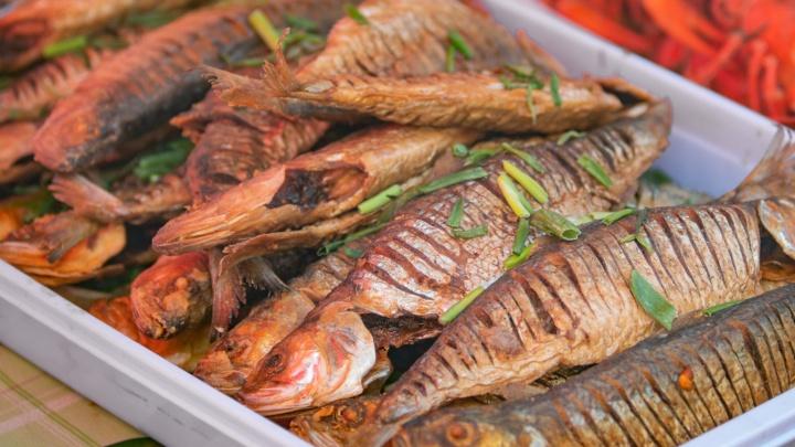 Посмотрите на хребет: 15 видов рыбы, которую лучше не есть