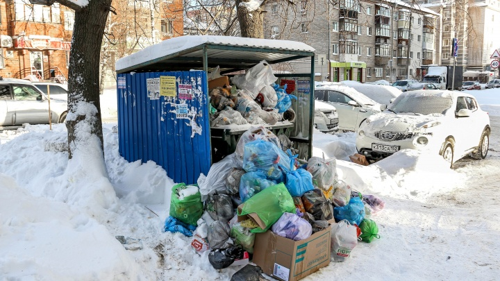 В Гордуме Нижнего Новгорода предлагают вернуть городским властям контроль за вывозом мусора
