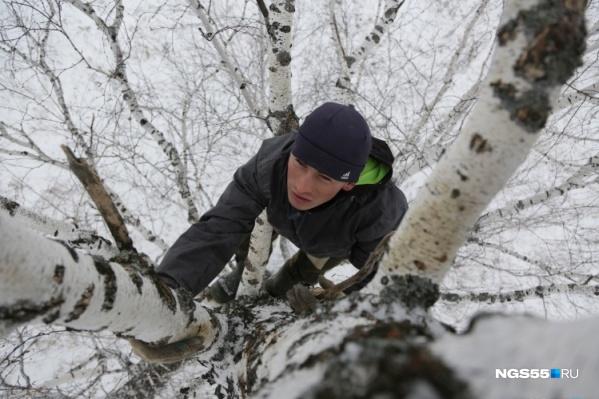 """Прошлым летом Алексей Дудоладов вел с березы прямые эфиры в TikTok, но учиться на высоте <nobr class=""""_"""">8 метров</nobr> оказалось не так удобно"""
