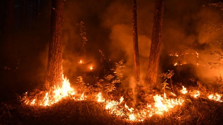 Алексей Орлов рассказал, когда рассеется дым в Екатеринбурге