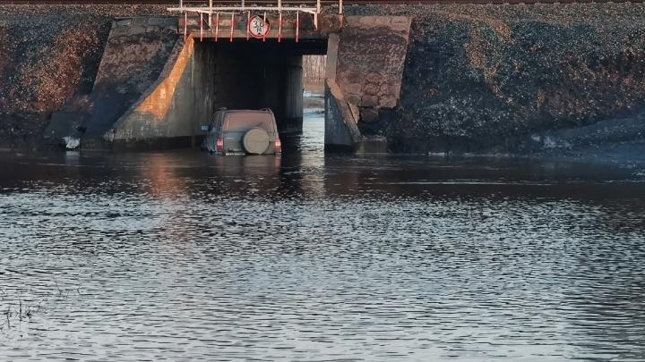 «Проезда там никогда и не было»: что говорит администрация сельсовета о затопленном пути в поселок под Новосибирском