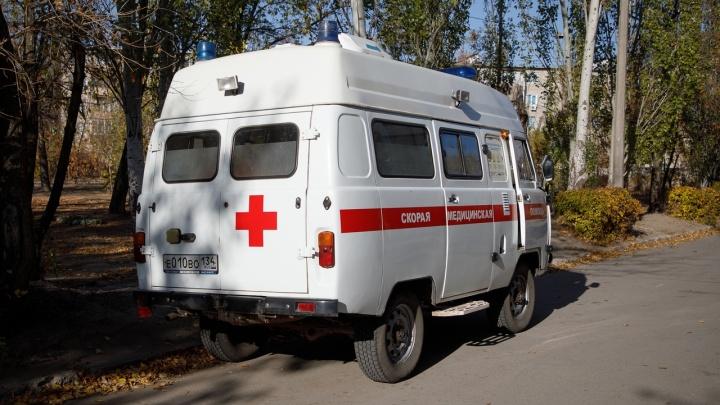 В Волгограде рухнувшее дерево ранило семилетнюю девочку. Девочку увезли в больницу
