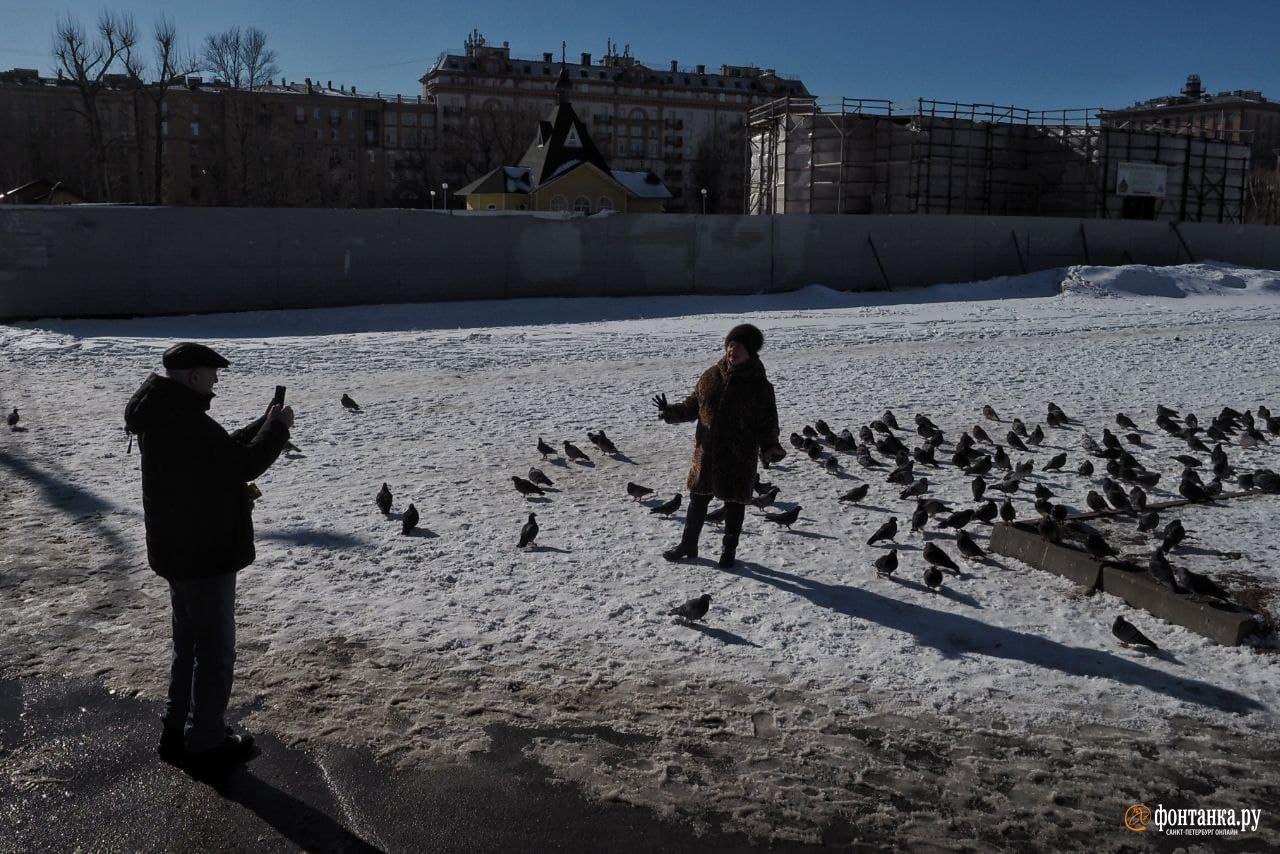 В Петербурге  последний мороз. Температура совершит скачок больше чем на 10 градусов