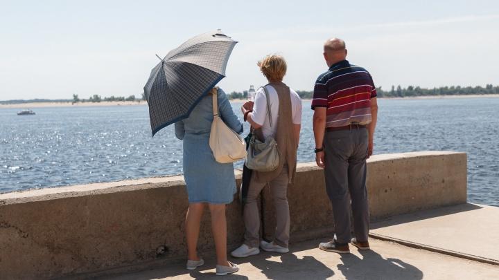 Такого не было минимум десять лет: синоптики прогнозируют засуху в Волгоградской области