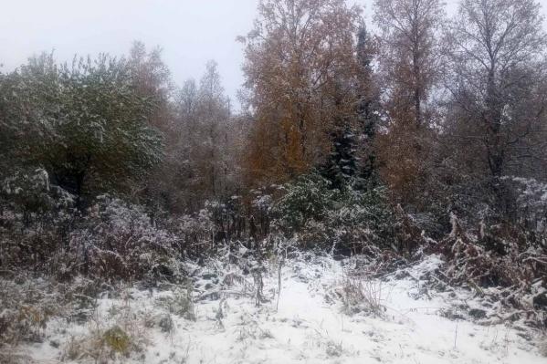 За городом уже выпал снег, водителям пора переобувать колеса